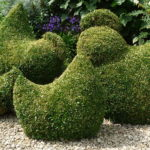 Topiary chickens