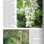 Cotswold-Life-p3